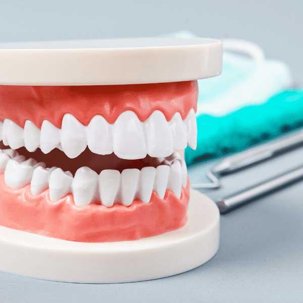 Dentist in northside Edmonton